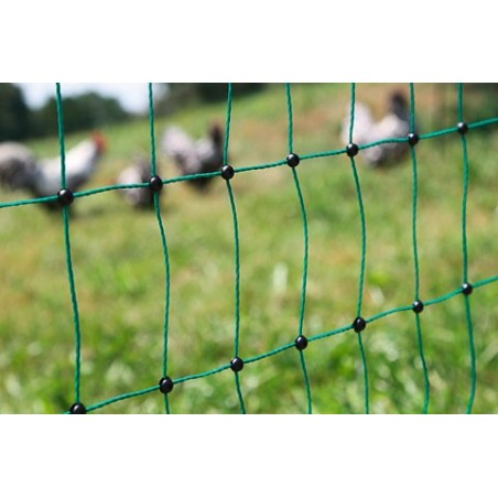Filet cloture DOUBLE POINTE 15 piquets ELECTRIFIABLE longueur 50m / hauteur 1,12m poule volaille