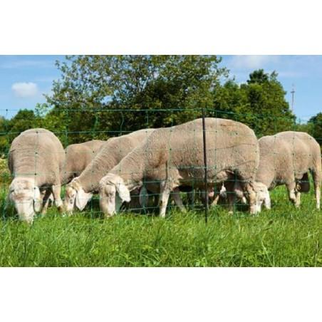 Détails sur  Filet OVINET haut 110cm/long 50m cloture 10 hauteurs de fils, mouton chevre
